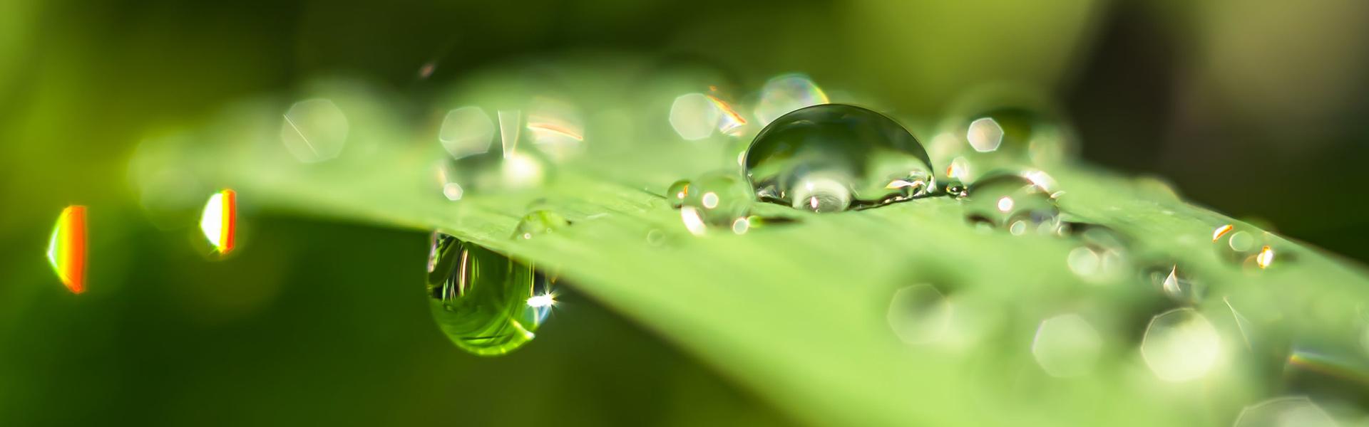 Onmisbaar in een duurzaam energiesysteem